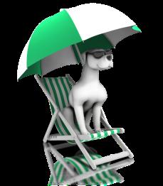 lounging_dog_days_summer_800_clr_12418